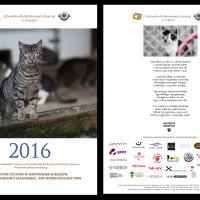 kalendarz koci_