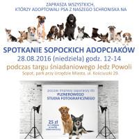 plakat spotkanie adopciaków copy